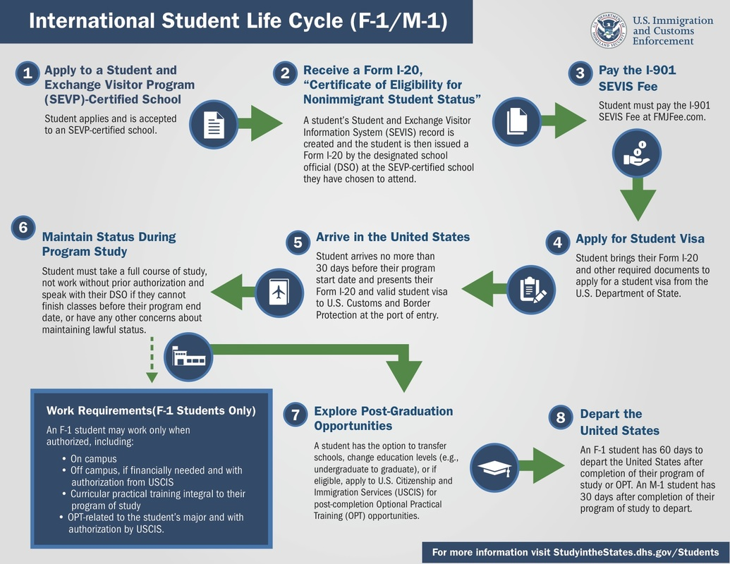 International Student Life Cycle
